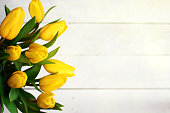 Spring decorative composition. Bouquet of yellow tulips tied by green ribbon. Close up portrait on white wooden background.