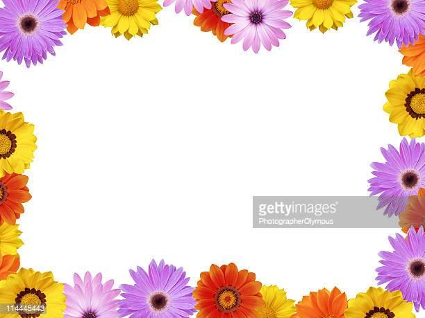 Spring flower frame XXXL+