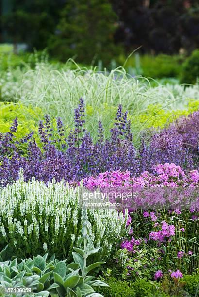Spring flower garden - II