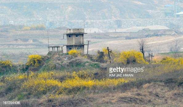 Spring flowers sprout in the bush field around a North Korean guard post in the demilitarised zone on April 23 2013 Tensions simmer along the world's...