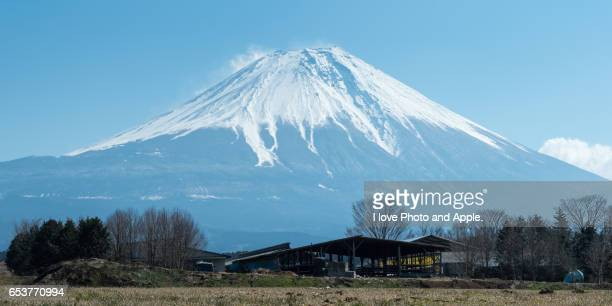 Spring Fuji at Asagiri-Kogen