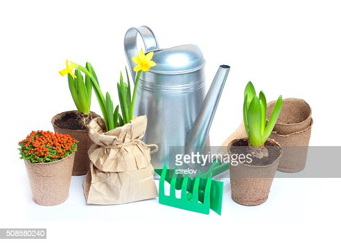 Spring Garden Tools isolated white background : Stock Photo