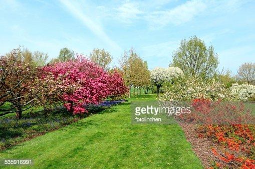 Spring impression : Stock Photo