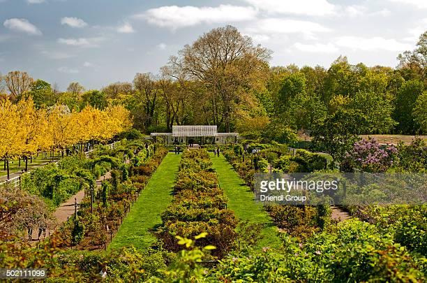 Spring in Brooklyn Botanical Garden, Brooklyn, NY