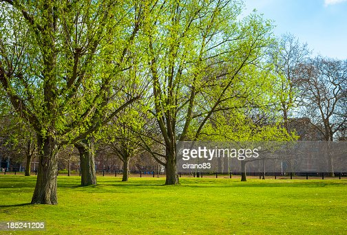 'Spring in Hyde Park, London'