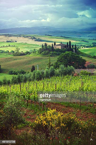 Paesaggio di primavera in Toscana