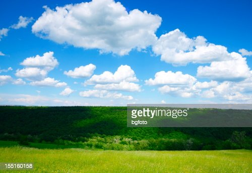 Spring landscape - Meadow : Stock Photo