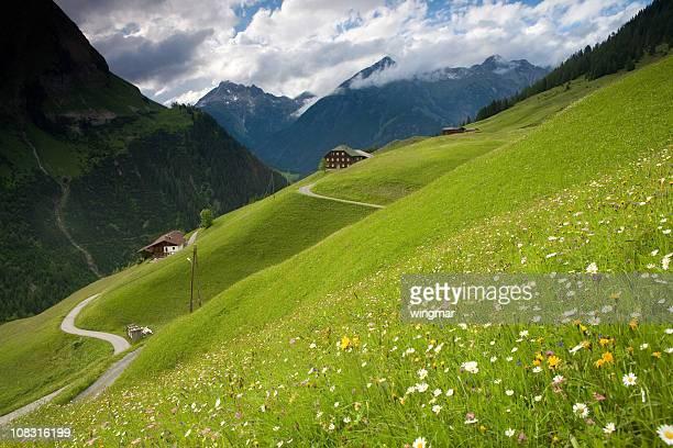 spring Wiese in der Nähe der Kaiser-tirol, Österreich