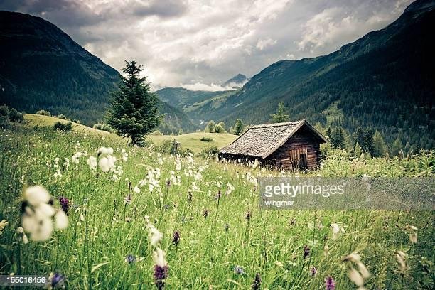 spring Wiese mit Dramatischer Himmel n- tirol, austria- Retro gefilterten