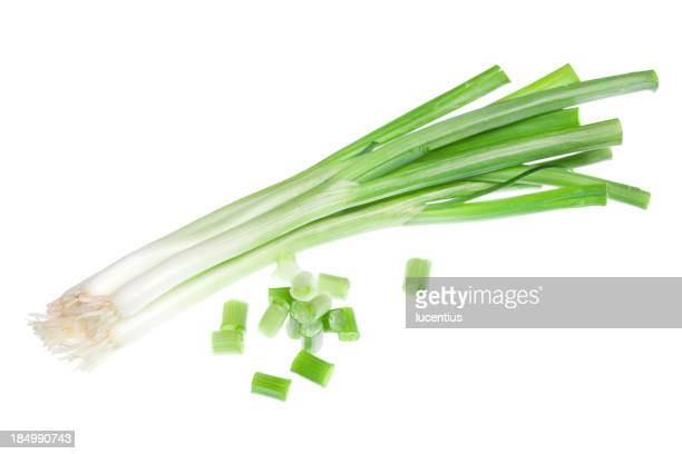 Spring onions isolated on white