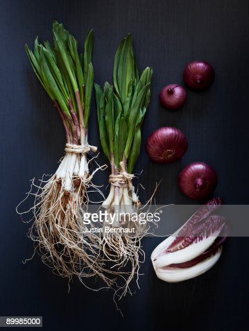 Spring Onions, Spanish Onion & Radicchio : Stock Photo