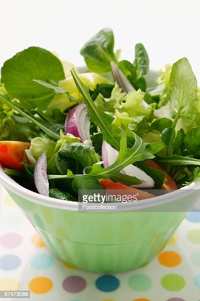 Spring salad with red onions and tomatoes in bowl