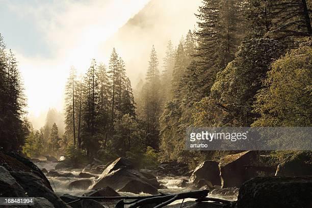 Vue sur le lever du soleil de printemps de Merced river au parc National de Yosemite