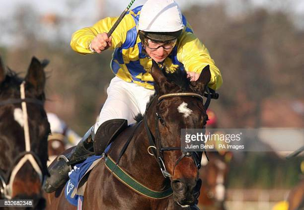 Spring the Que ridden by Philip Enright goes on to win the Pierse Hurdle at Leopardstown Racecourse