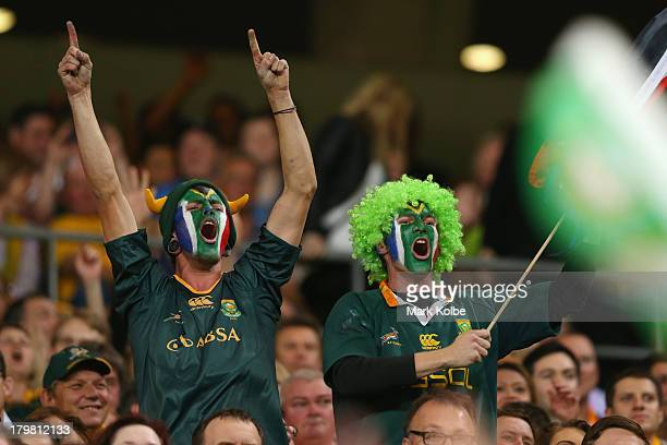 Springboks supporter celebrate during The Rugby Championship match between the Australian Wallabies and the South African Springboks at Suncorp...