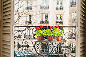 Springtime with red geraniums on a Paris balcony