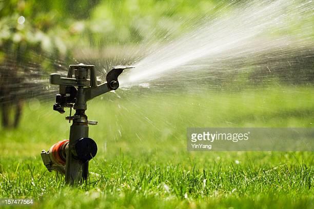 Sprinkler Watering Grass Lawn, Summer Irrigation Equipment for Spraying Yard