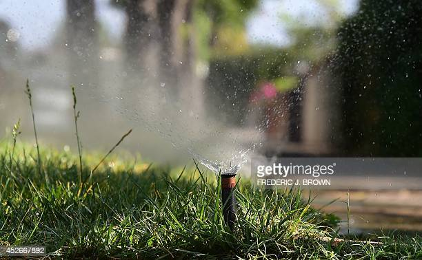 Sprinklers water a patch of grass on the sidewalk in front of a house in Alhambra California on July 25 2014 In the latest report released by the...