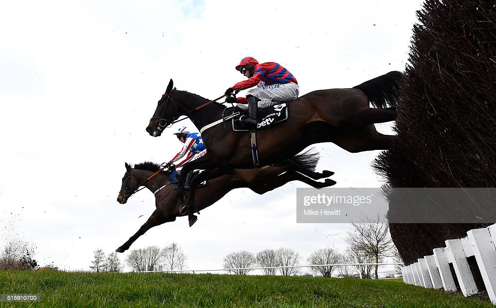 Sprinter Sacre ridden by Nico de Boinville clears the third last in the Betway Queen Mother Champion Chase during Ladies Day of the Cheltenham...