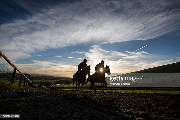 Sprinting up the polytrack at Sandhill Racing Stables on November 12 2015 in Minehead England Sandhill Racing Stables set in 500 hundred acres of...