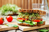 sprouts avocado tomato spinach chickpeas burger rye sandwich. toning. selective focus