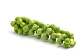 Sprouts on a Stalk