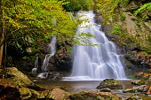 Spruce Flat Falls in Great Smoky Mountains National Park