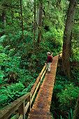 Spruce Fringe Trail