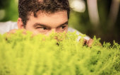 A spying man hidden behind a plant.
