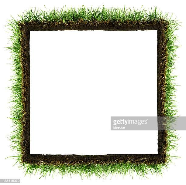 Square Grass Frame