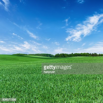 Square spring landscape 60MPix XXXXL - meadow, blue sky : Stock Photo