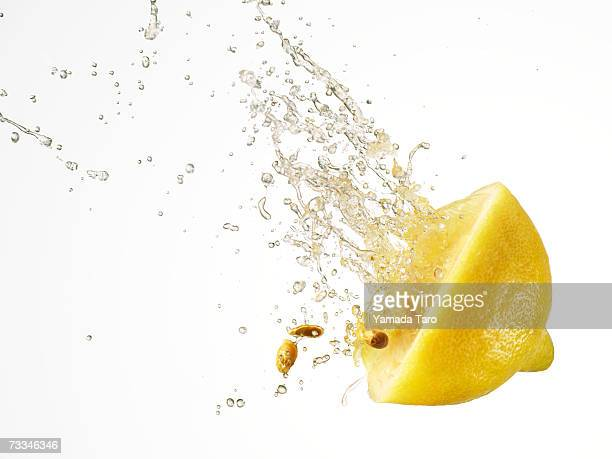 Squashed lemon slice spurting juice and pips