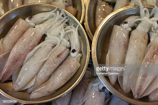 Squid is displayed for sale at the Singapore Chinatown Complex Wet Market on February 21 2013 in Singapore The Chinatown Complex Wet Market is a...