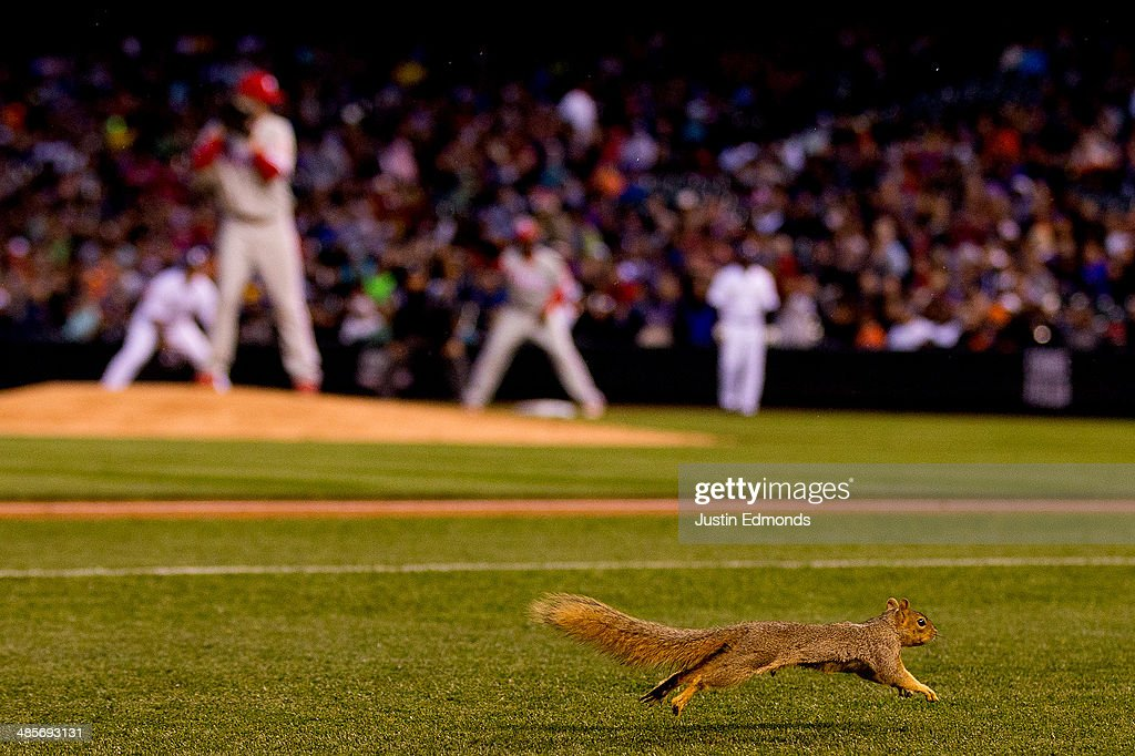 A squirrel runs on the infield during the fourth inning of a game between the Philadelphia Phillies and the Colorado Rockies at Coors Field on April 19, 2014 in Denver, Colorado.
