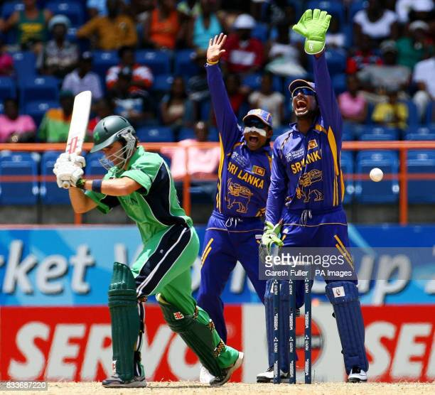 Sri Lanka wicketkeeper Kumar Sangakkara and captain Mahela Jayawardene appeal successfully for the wicket Ireland's Kyle McCallan during the ICC...