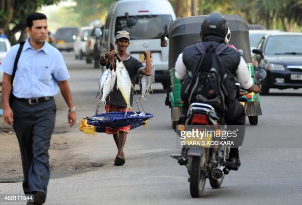 A Sri Lankan fisherman carries his catch to be sold in Colombo on June 5 2014 Sri Lanka's economy recorded 80 percentplus growth for two straight...