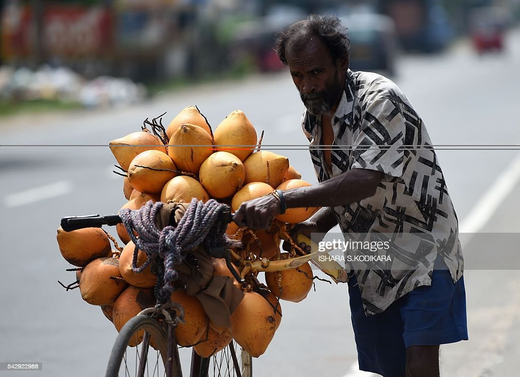 A Sri Lankan fruit vendor selling coconuts pushes his bicycle in Colombo on June 25, 2016. / AFP / ISHARA
