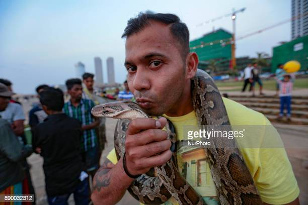 A Sri Lankan man wraps a fullgrown pet python reptile on his neck and kisses it at one of the more popular recreation spots the Galle Face Green in...