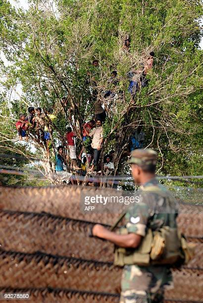 Sri Lankan military stand guard as wardisplaced civilians look on at a staterun internment camp in Vavuniya on November 21 2009 Sri Lanka said it...