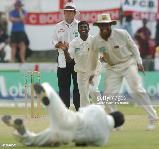 Sri Lankan spinner Muttiah Muralitharan starts to celebrate with Hashan Tillakaratne and Sanath Jayasuriya taking the wicket of Richard Johnson only...