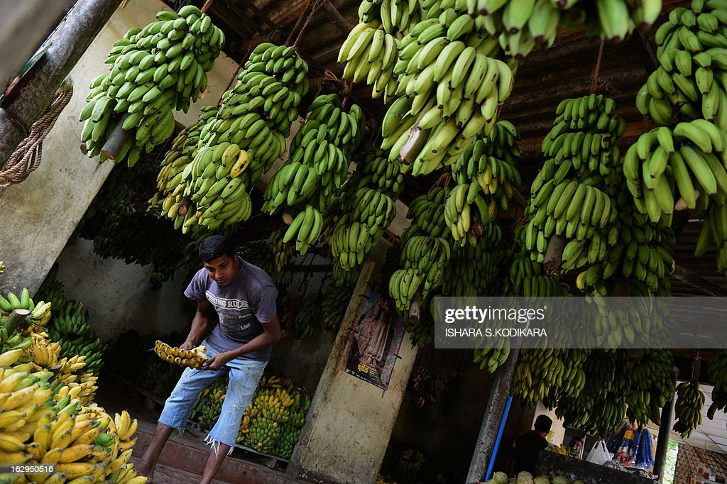 A Sri Lankan vendor sells bananas at a vegetable market in Kelaniya on March 2, 2013. Sri Lanka's economy grew by more than eight percent a year in the first full two years after security forces ended a war with Tamil Tiger rebels in May 2009. Some 100,000 people were killed in 37 years of fighting. AFP PHOTO / Ishara S. KODIKARA