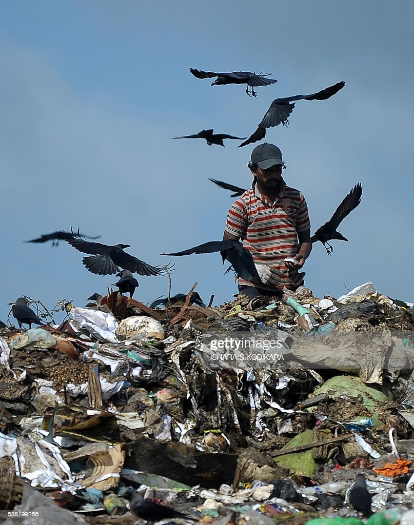 http://media.gettyimages.com/photos/sri-lankan-worker-sorts-garbage-at-a-landfill-in-the-kolonnawa-suburb-picture-id538199256
