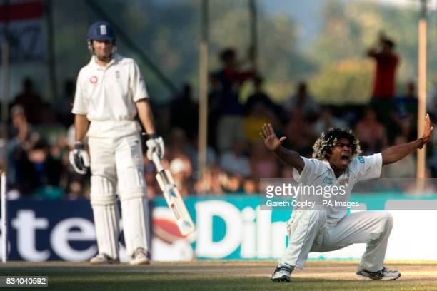 Sri Lanka's Lasith Malinga appeals for the wicket of England's Michael Vaughan