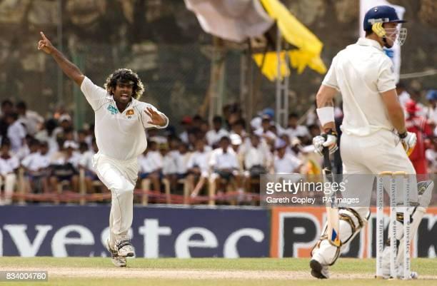 Sri Lanka's Lasith Malinga celebrates dismissing England's Kevin Pietersen during Third Test match at Galle International Stadium Galle