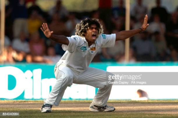 Sri Lanka's Lasith Malinga makes an appeal