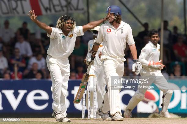 Sri Lanka's Lasith Malinga successfully appeals for the wicket of England's Ryan Sidebottom for 31 runs during the first Test match at Asgiriya...