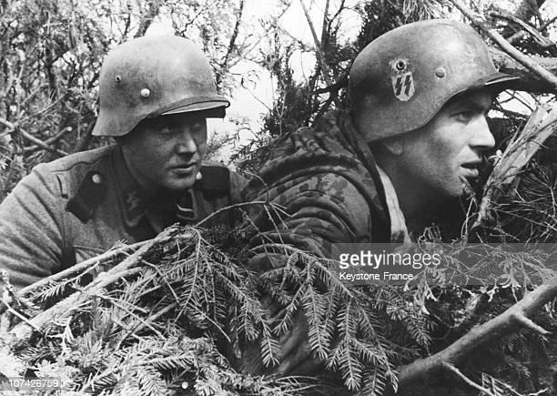 Ss Battalion Narwa In Estonia On June 9Th 1944