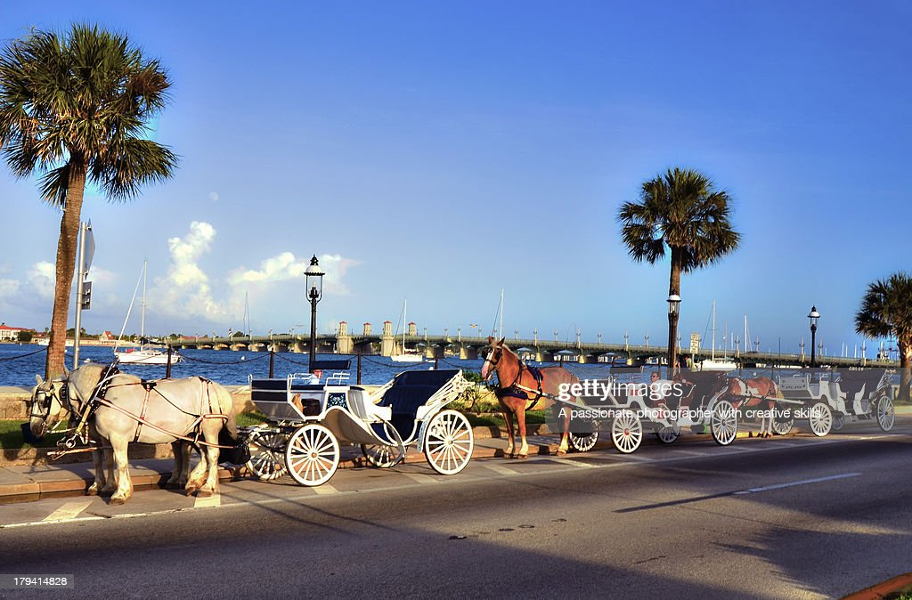 St. Augustine Horse Carriage Rides