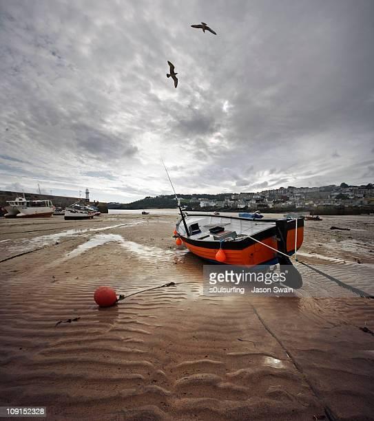 St Ives Harbour, Cornwall. Gull ballet.