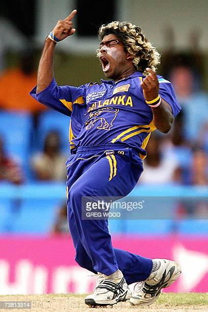 St John's ANTIGUA AND BARBUDA Sri Lankan cricketer Lasith Malinga is jubilant after taking the wicket of England's Ed Joyce during the Cricket World...